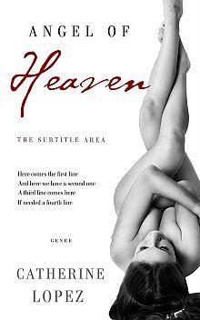 Pre Made Book Cover Silver